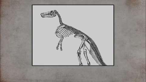 American Pickers: Prehistoric Pick