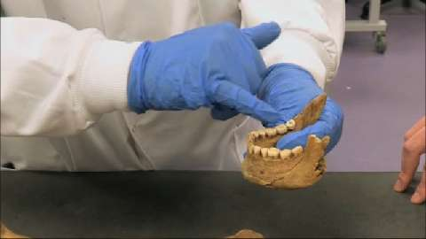 Grave Trade: Burial Body