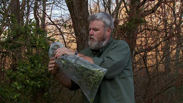 Surviving Alone: Transpiration Bag