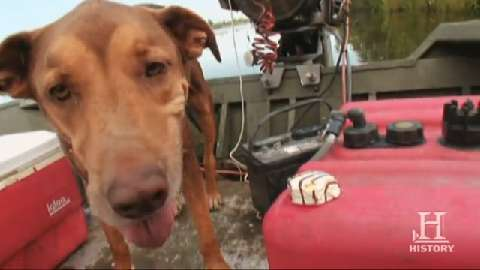 Swamp People: Tyler the Dog