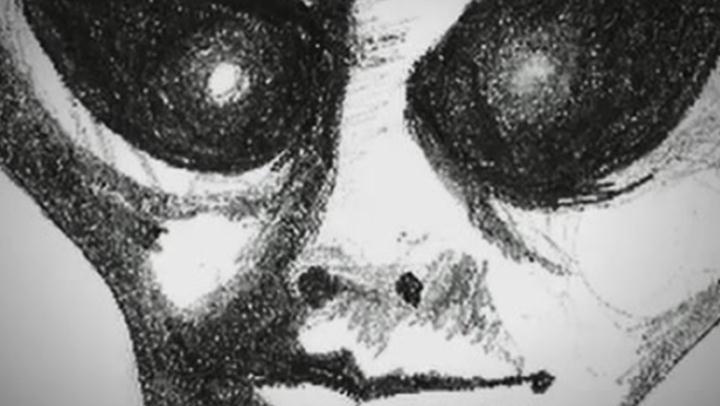 Alien Files: Earthly Beings